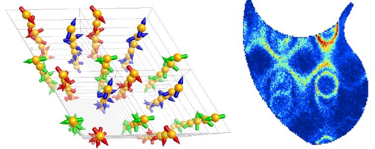 Structure magnétique et excitations dans le langasite de Fe